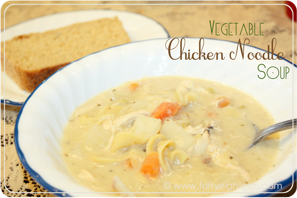 vegetable-chicken-noodle-soup