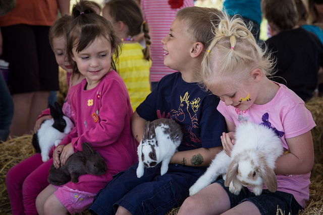 Win a family pass (ARV $25) to Baby Animal Days in Kaysville, UT